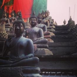 lots o' Buddhas