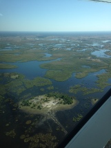 view over the Okavango